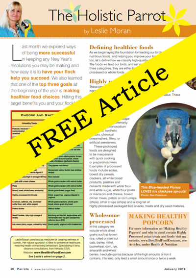 Free Article