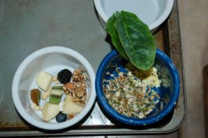 Sample Balanced meal for a Blue & Gold Macaw.